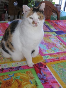 Sasha helping with quilt layout.