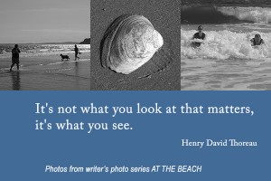 WhatYouSee Quote