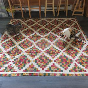 Sasha and Luigi seem to approve. I still like the colours and the pattern. Piecing imperfections seem less obvious.
